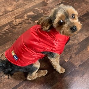 Canine chic exclusives red puffer coat size small